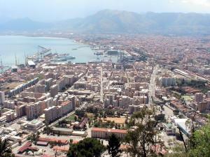 "Poesia: Specie mediterranea ""evoluta"""